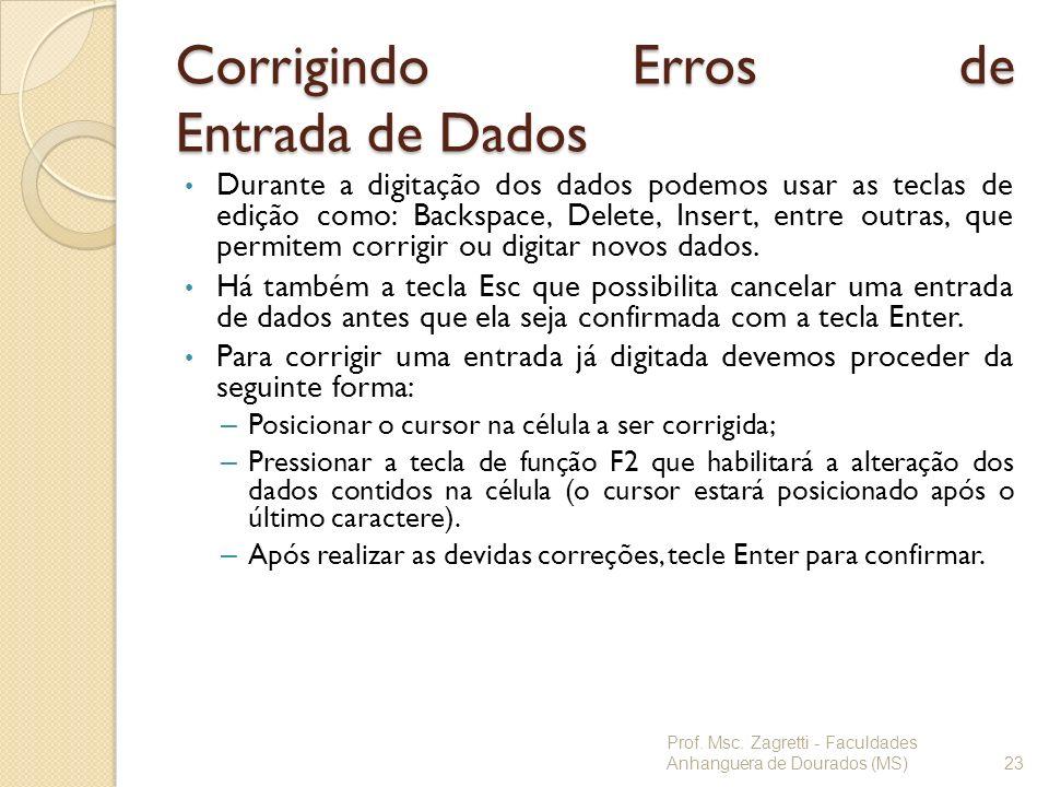 Corrigindo Erros de Entrada de Dados Durante a digitação dos dados podemos usar as teclas de edição como: Backspace, Delete, Insert, entre outras, que