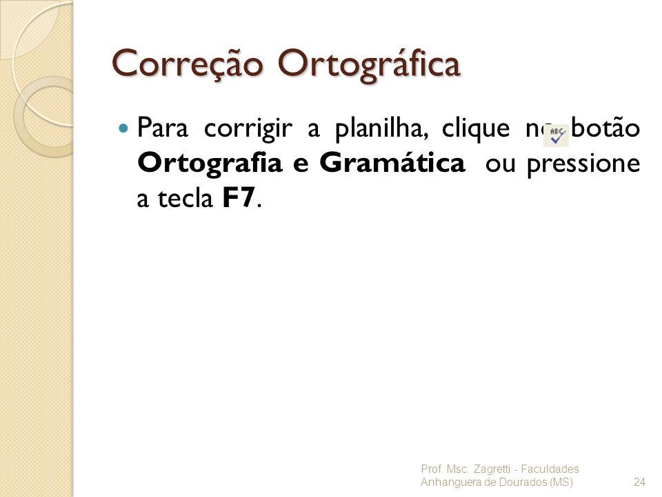 Correção Ortográfica Para corrigir a planilha, clique no botão Ortografia e Gramática ou pressione a tecla F7. Prof. Msc. Zagretti - Faculdades Anhang