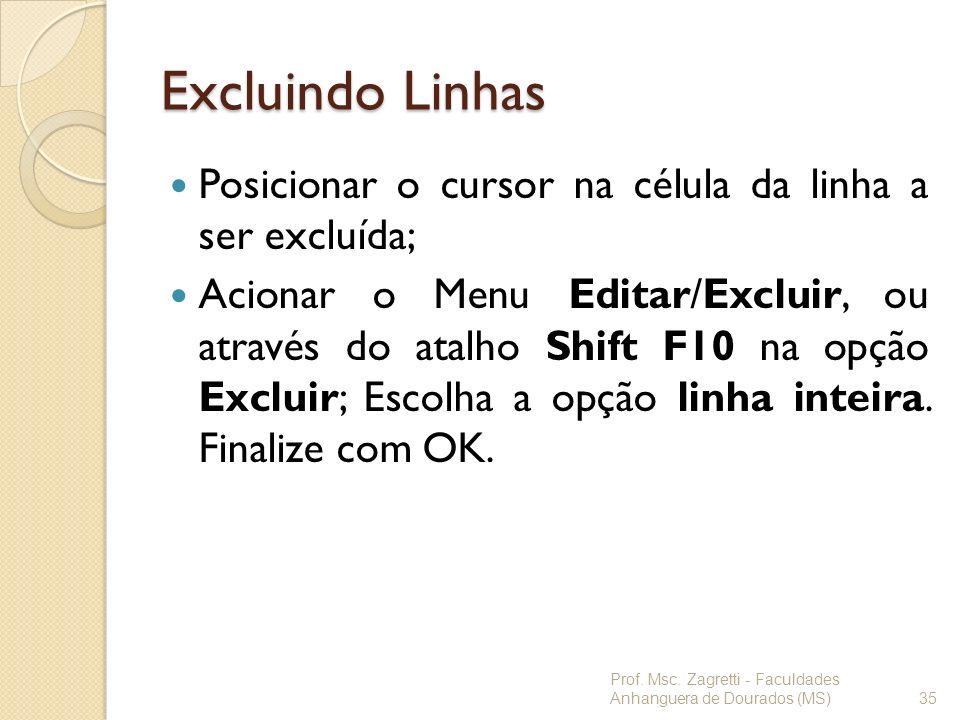 Excluindo Linhas Posicionar o cursor na célula da linha a ser excluída; Acionar o Menu Editar/Excluir, ou através do atalho Shift F10 na opção Excluir