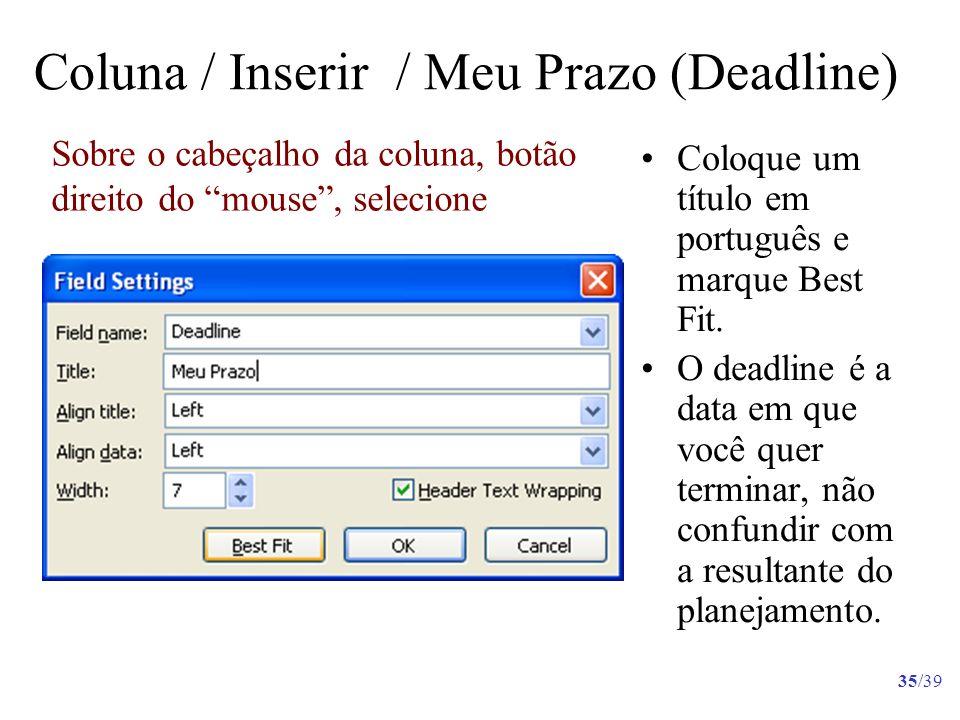 35/39 Coloque um título em português e marque Best Fit. O deadline é a data em que você quer terminar, não confundir com a resultante do planejamento.