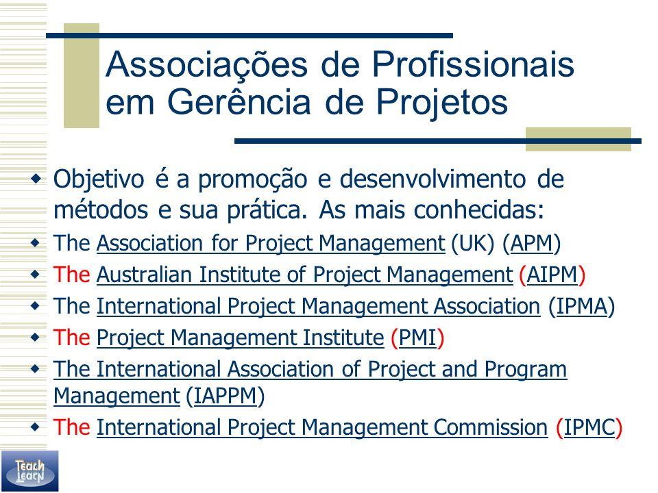 Associações de Profissionais em Gerência de Projetos Objetivo é a promoção e desenvolvimento de métodos e sua prática. As mais conhecidas: The Associa