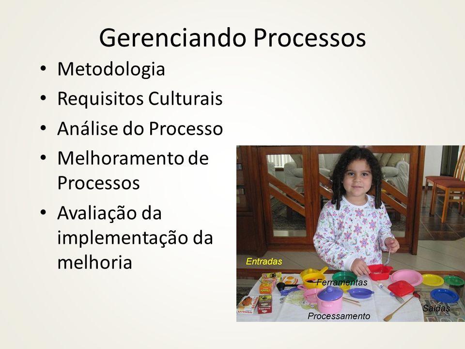 Análise do processo Medição Processo: os recursos que são requeridos para operar o processo são conhecidos e foram comparados com um mínimo teórico.