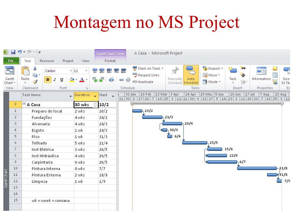 22/54 Montagem no MS Project