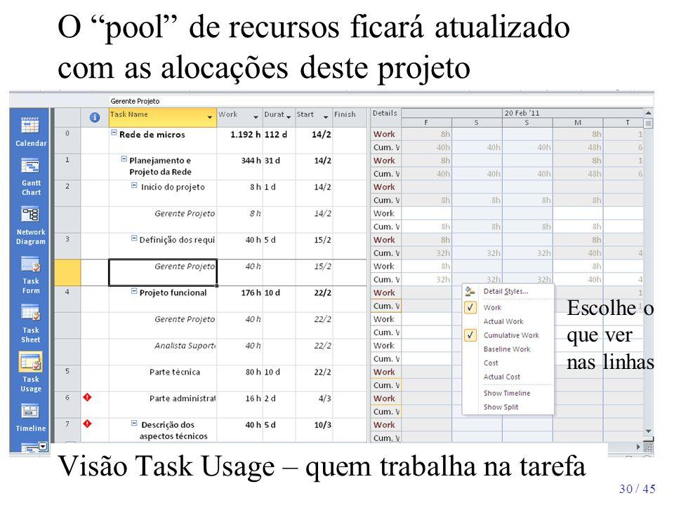 30 / 45 O pool de recursos ficará atualizado com as alocações deste projeto Escolhe o que ver nas linhas Visão Task Usage – quem trabalha na tarefa