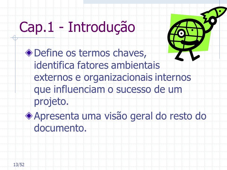 13/52 Cap.1 - Introdução Define os termos chaves, identifica fatores ambientais externos e organizacionais internos que influenciam o sucesso de um pr