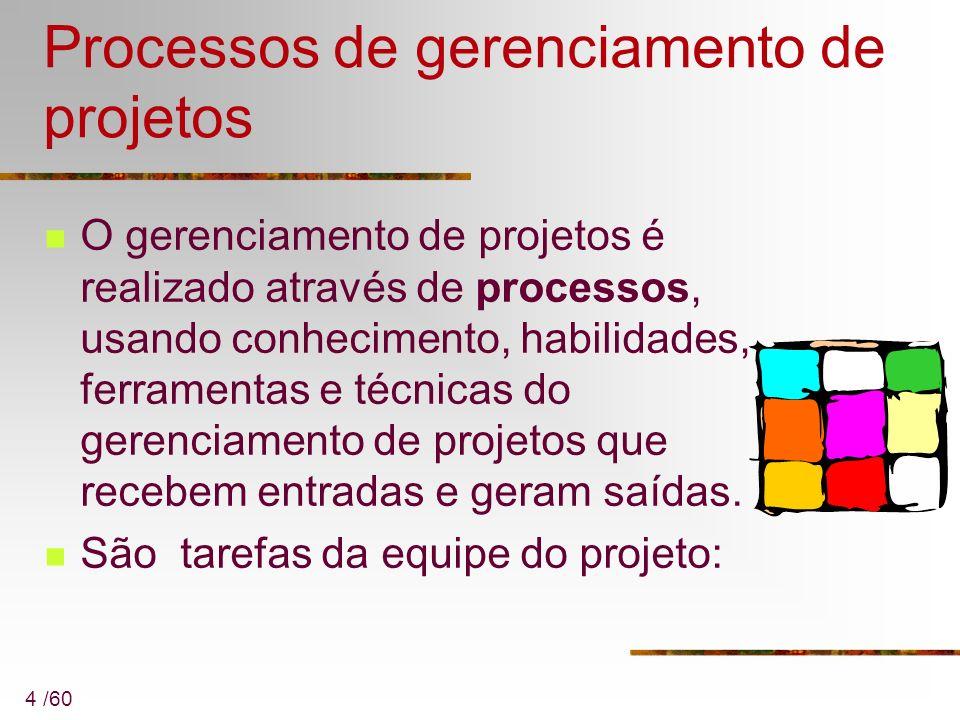 4 /60 Processos de gerenciamento de projetos O gerenciamento de projetos é realizado através de processos, usando conhecimento, habilidades, ferrament
