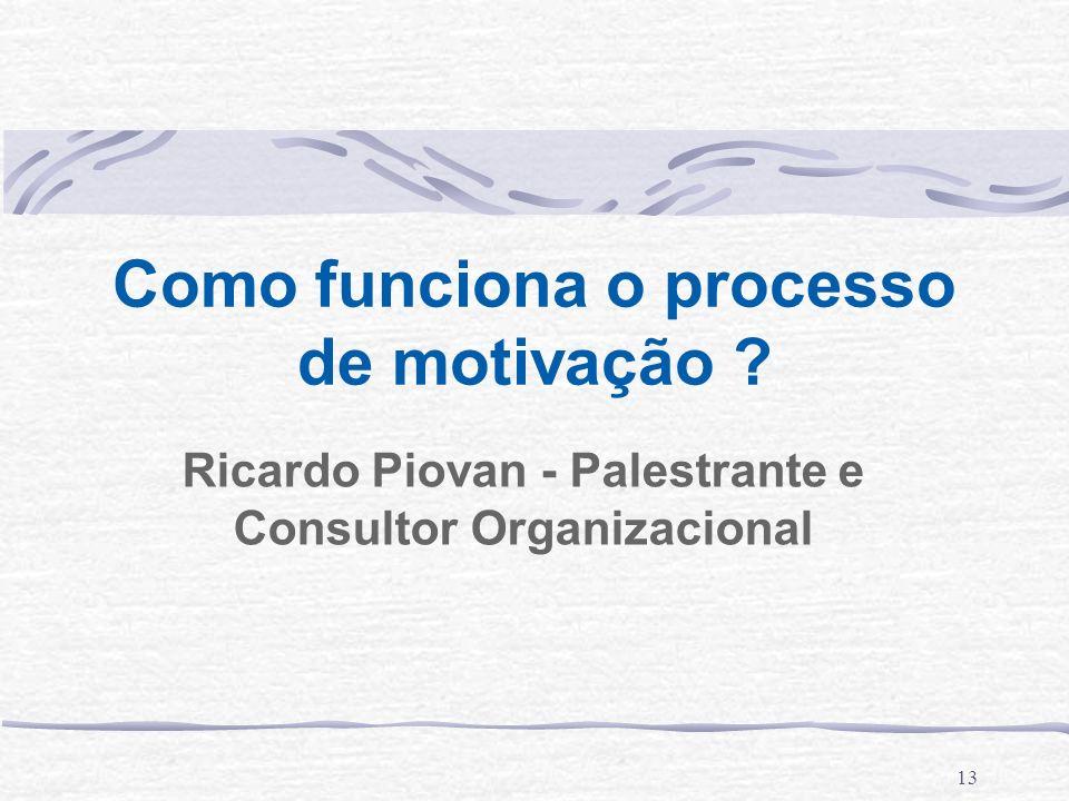13 Como funciona o processo de motivação ? Ricardo Piovan - Palestrante e Consultor Organizacional