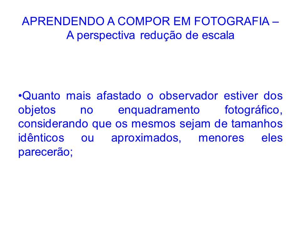 APRENDENDO A COMPOR EM FOTOGRAFIA – A perspectiva redução de escala Quanto mais afastado o observador estiver dos objetos no enquadramento fotográfico