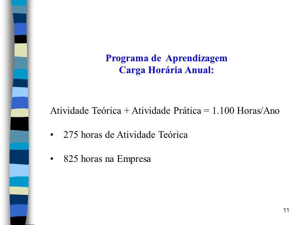 11 Programa de Aprendizagem Carga Horária Anual: Atividade Teórica + Atividade Prática = 1.100 Horas/Ano 275 horas de Atividade Teórica 825 horas na E