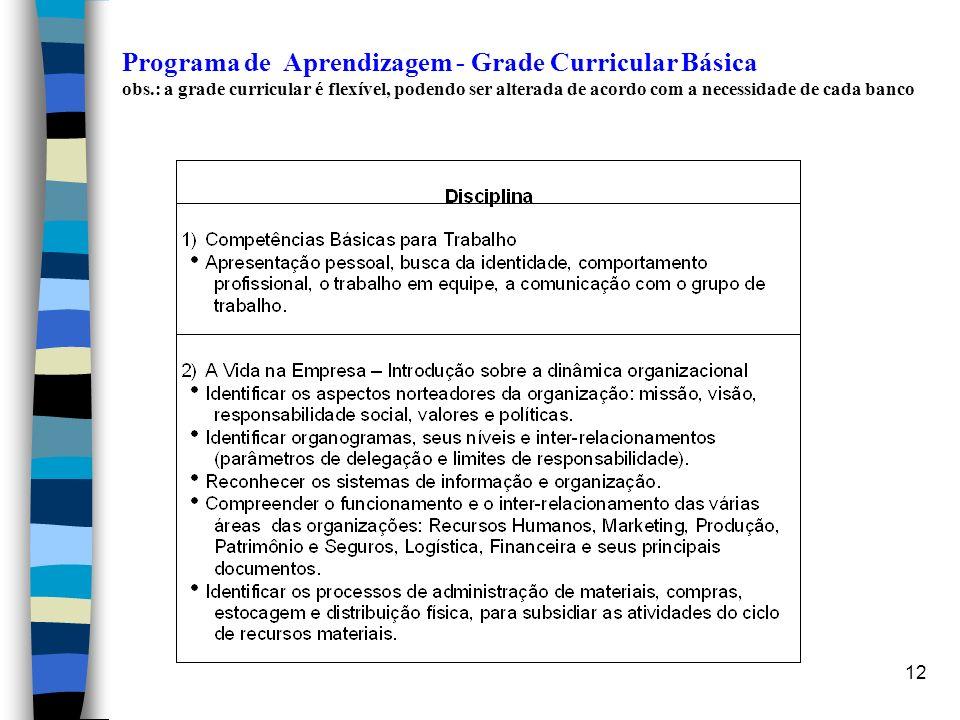 12 Programa de Aprendizagem - Grade Curricular Básica obs.: a grade curricular é flexível, podendo ser alterada de acordo com a necessidade de cada ba
