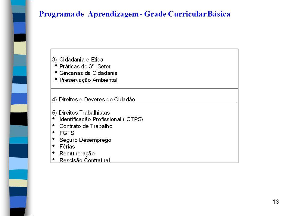 13 Programa de Aprendizagem - Grade Curricular Básica