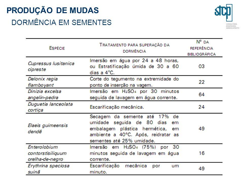 PRODUÇÃO DE MUDAS DORMÊNCIA EM SEMENTES