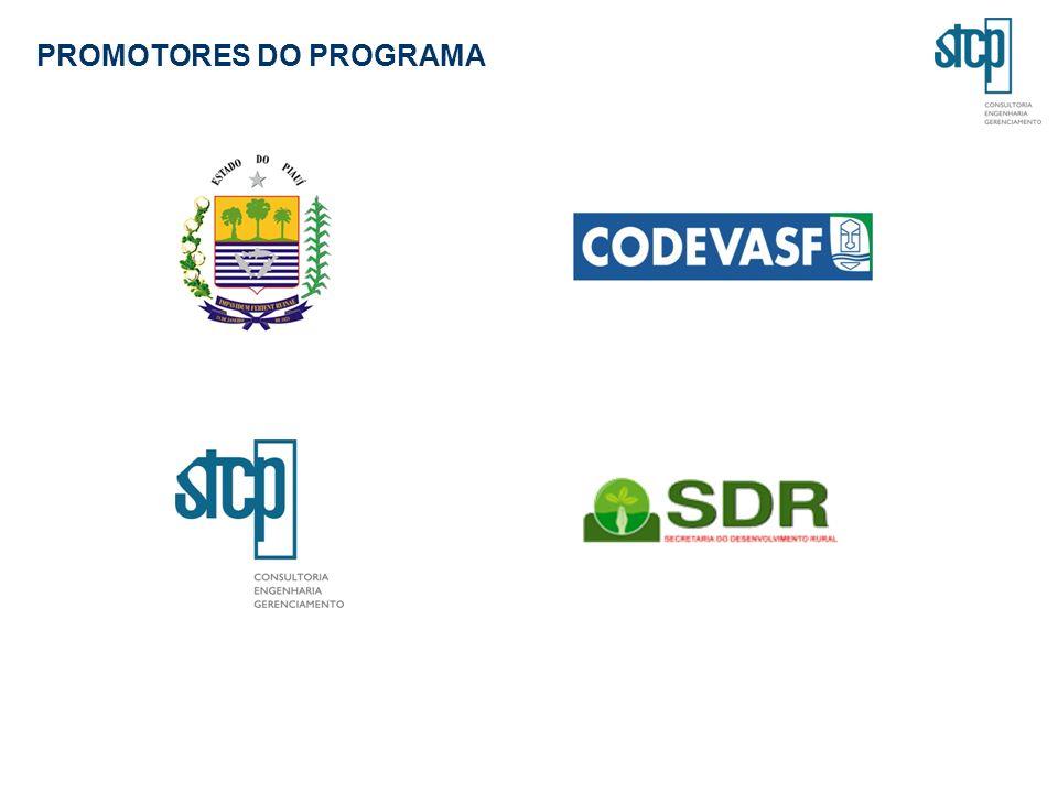 PROMOTORES DO PROGRAMA