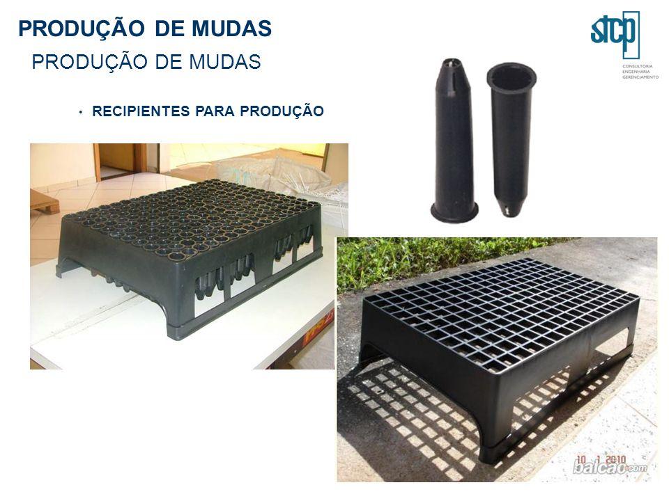 PRODUÇÃO DE MUDAS RECIPIENTES PARA PRODUÇÃO