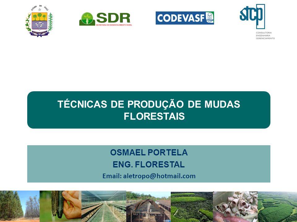 TÉCNICAS DE PRODUÇÃO DE MUDAS FLORESTAIS OSMAEL PORTELA ENG. FLORESTAL Email: aletropo@hotmail.com