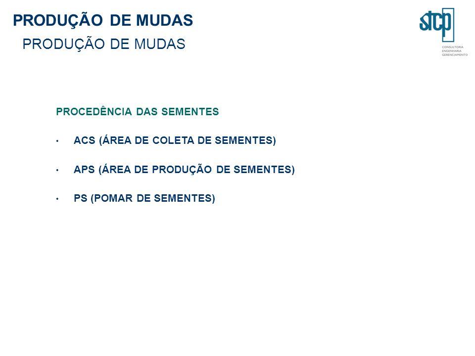PROCEDÊNCIA DAS SEMENTES ACS (ÁREA DE COLETA DE SEMENTES) APS (ÁREA DE PRODUÇÃO DE SEMENTES) PS (POMAR DE SEMENTES)