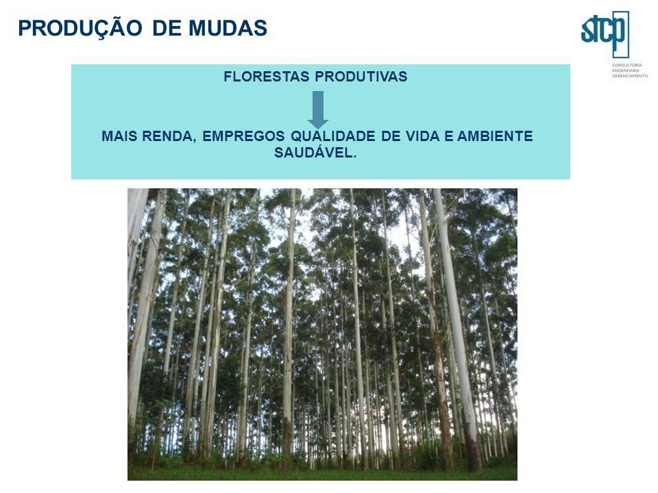 PRODUÇÃO DE MUDAS FLORESTAS PRODUTIVAS MAIS RENDA, EMPREGOS QUALIDADE DE VIDA E AMBIENTE SAUDÁVEL.