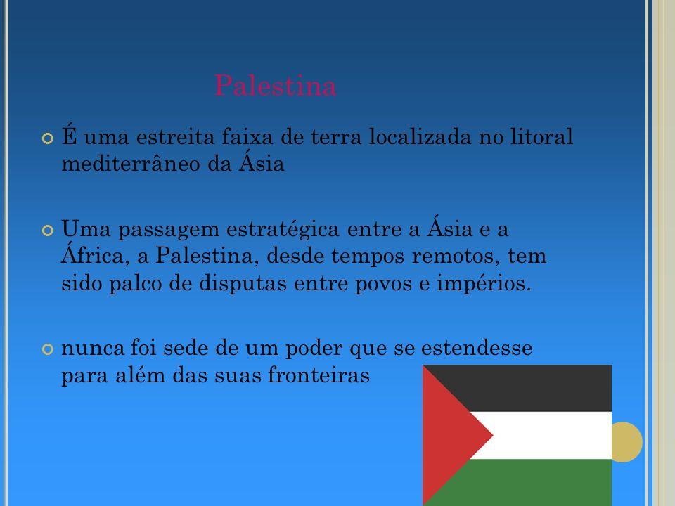 Palestina É uma estreita faixa de terra localizada no litoral mediterrâneo da Ásia Uma passagem estratégica entre a Ásia e a África, a Palestina, desd