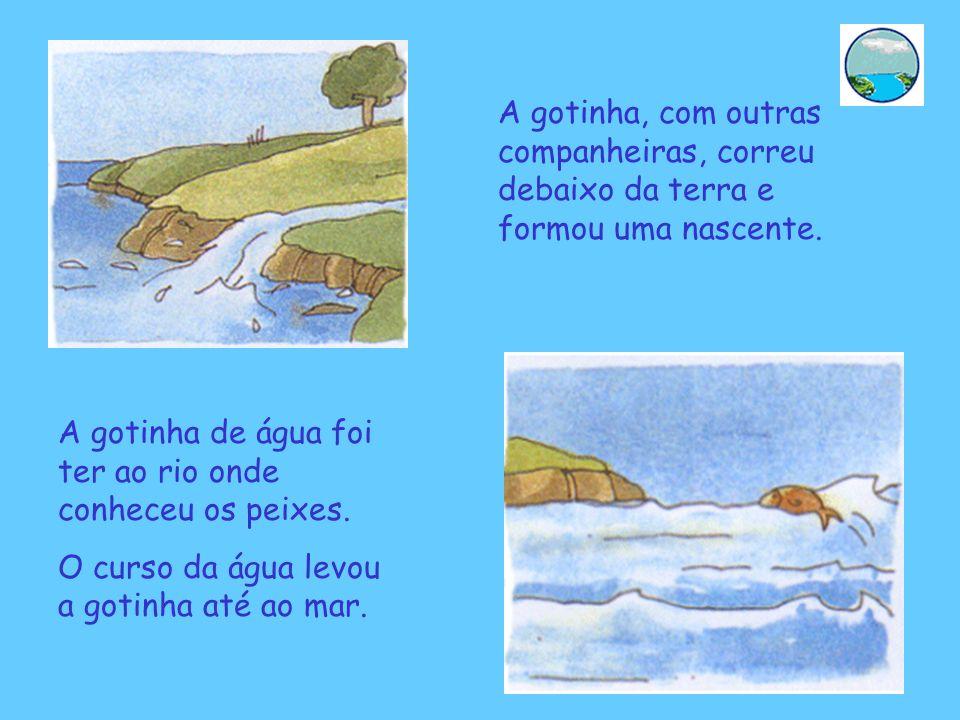 A gotinha, com outras companheiras, correu debaixo da terra e formou uma nascente. A gotinha de água foi ter ao rio onde conheceu os peixes. O curso d
