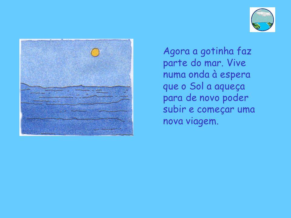Agora a gotinha faz parte do mar. Vive numa onda à espera que o Sol a aqueça para de novo poder subir e começar uma nova viagem.