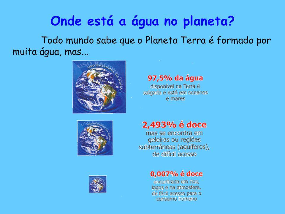 Onde está a água no planeta? Todo mundo sabe que o Planeta Terra é formado por muita água, mas...