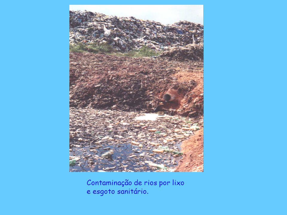 Contaminação de rios por lixo e esgoto sanitário.