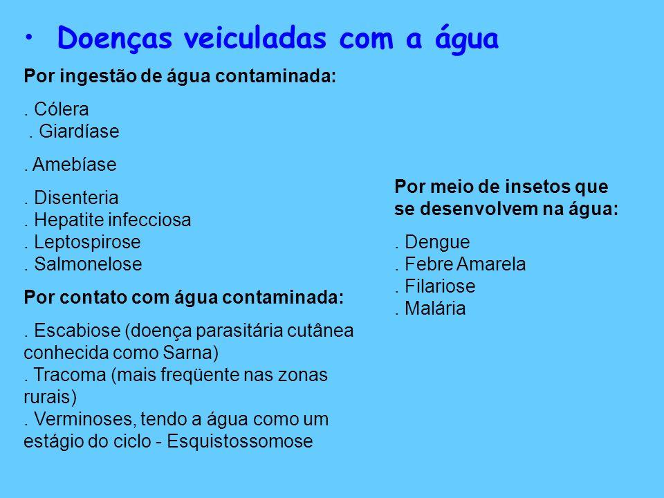 Doenças veiculadas com a água Por ingestão de água contaminada:. Cólera. Giardíase. Amebíase. Disenteria. Hepatite infecciosa. Leptospirose. Salmonelo