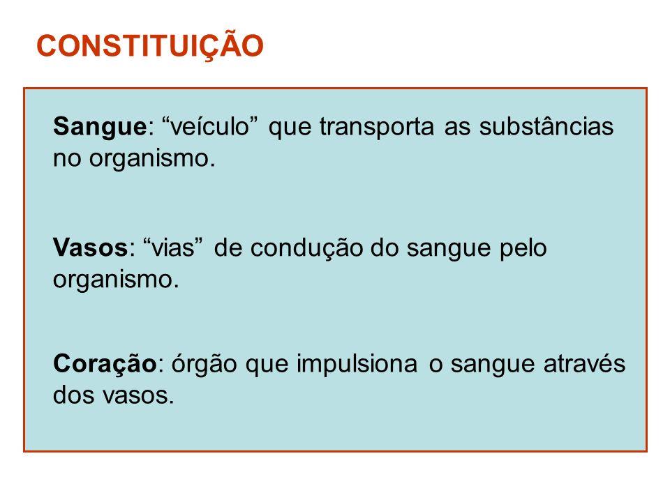 CONSTITUIÇÃO Sangue: veículo que transporta as substâncias no organismo. Vasos: vias de condução do sangue pelo organismo. Coração: órgão que impulsio