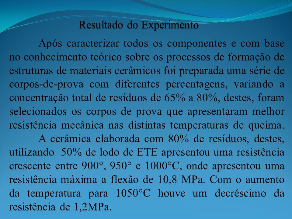 Após caracterizar todos os componentes e com base no conhecimento teórico sobre os processos de formação de estruturas de materiais cerâmicos foi prep