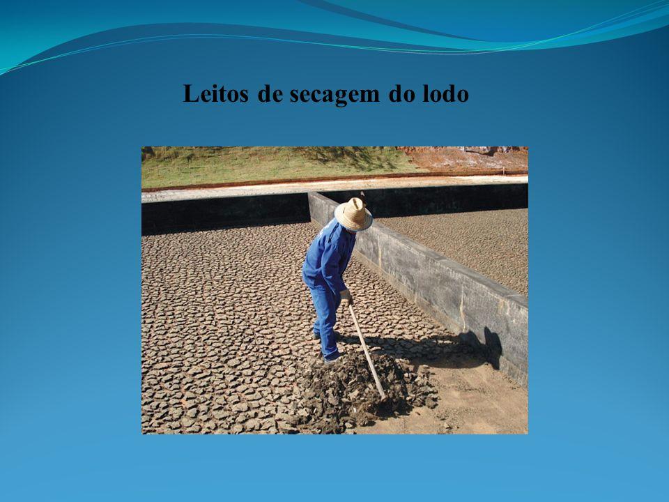 Leitos de secagem do lodo