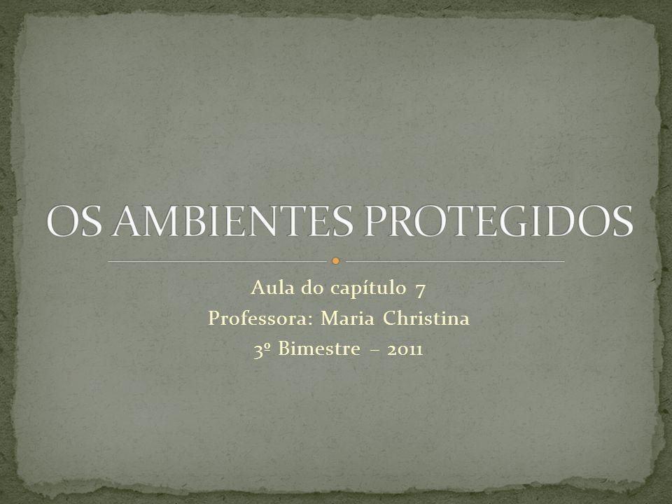 Aula do capítulo 7 Professora: Maria Christina 3º Bimestre – 2011