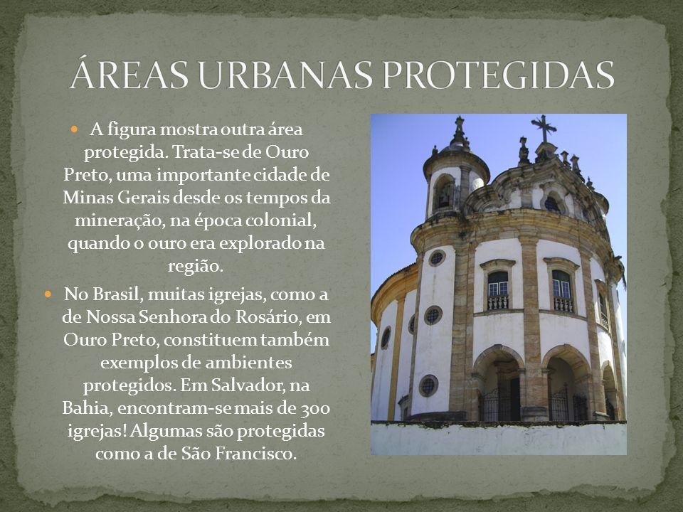 O Museu do Ipiranga, em São Paulo, é um exemplo interessante de ambiente protegido na cidade. Foi construído às margens do Rio Ipiranga, onde D. Pedro