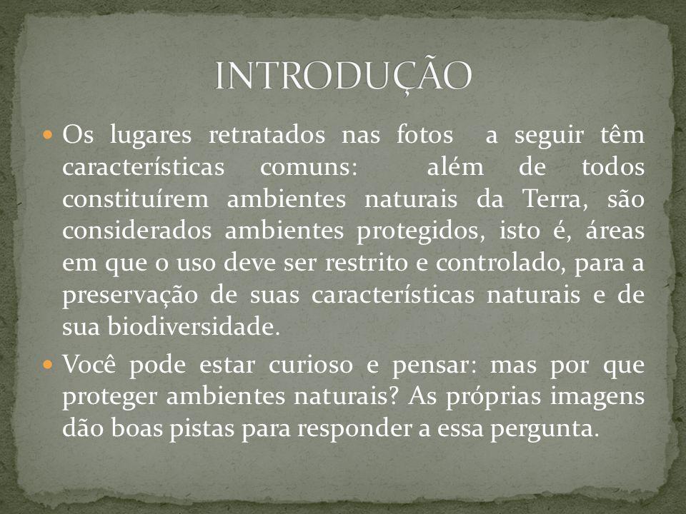 Os lugares retratados nas fotos a seguir têm características comuns: além de todos constituírem ambientes naturais da Terra, são considerados ambientes protegidos, isto é, áreas em que o uso deve ser restrito e controlado, para a preservação de suas características naturais e de sua biodiversidade.