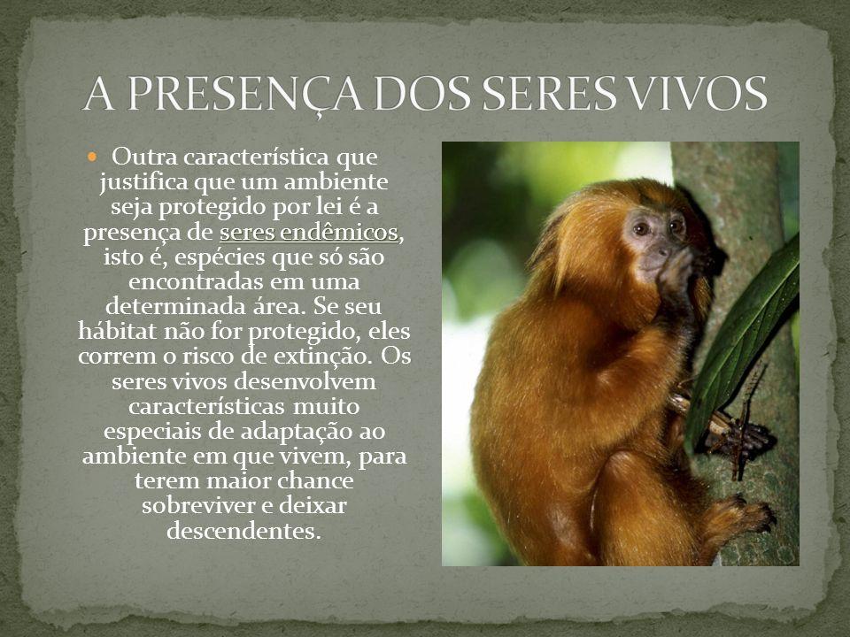 seres endêmicos Outra característica que justifica que um ambiente seja protegido por lei é a presença de seres endêmicos, isto é, espécies que só são encontradas em uma determinada área.