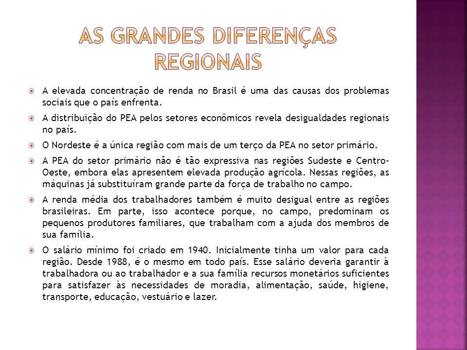 A elevada concentração de renda no Brasil é uma das causas dos problemas sociais que o país enfrenta. A distribuição do PEA pelos setores econômicos r