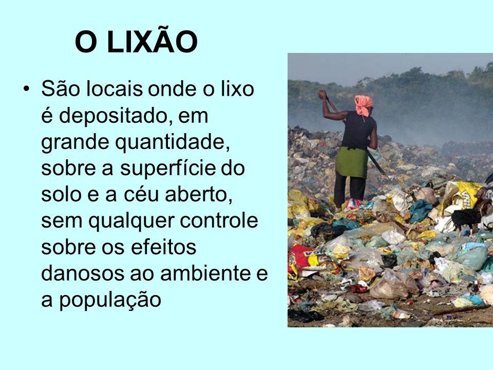 O lixo indevidamente administrado provoca mau cheiro, fornece a proliferação de animais nocivos e transmissores de doenças (ratos, formigas, moscas e