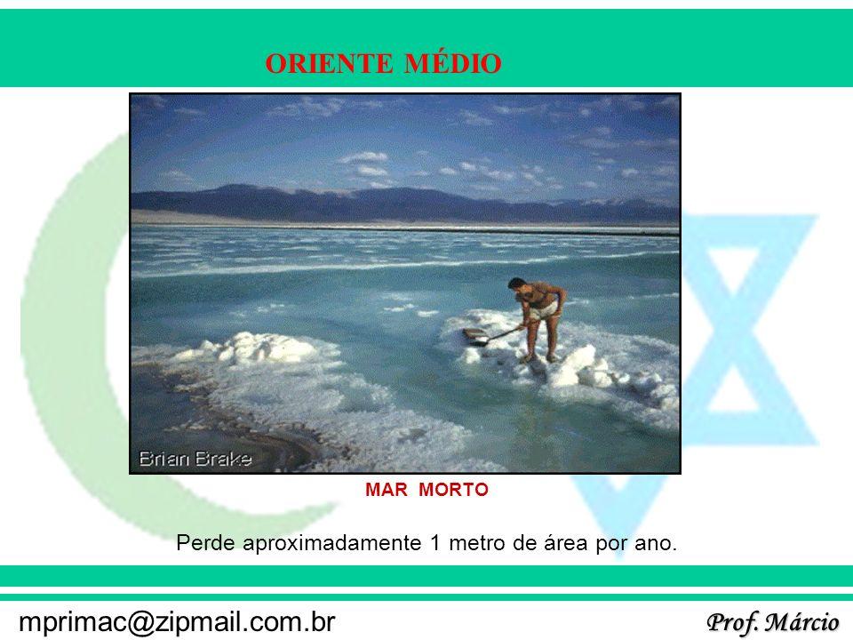 Prof. Márcio mprimac@zipmail.com.br ORIENTE MÉDIO MAR MORTO Perde aproximadamente 1 metro de área por ano.
