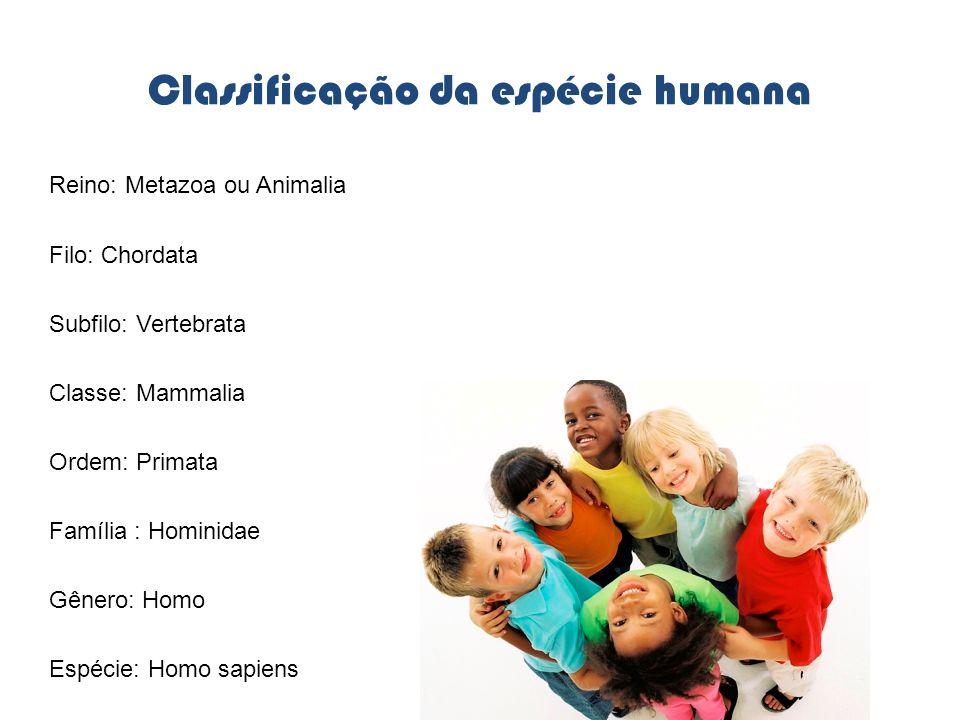 Classificação da espécie humana Reino: Metazoa ou Animalia Filo: Chordata Subfilo: Vertebrata Classe: Mammalia Ordem: Primata Família : Hominidae Gêne