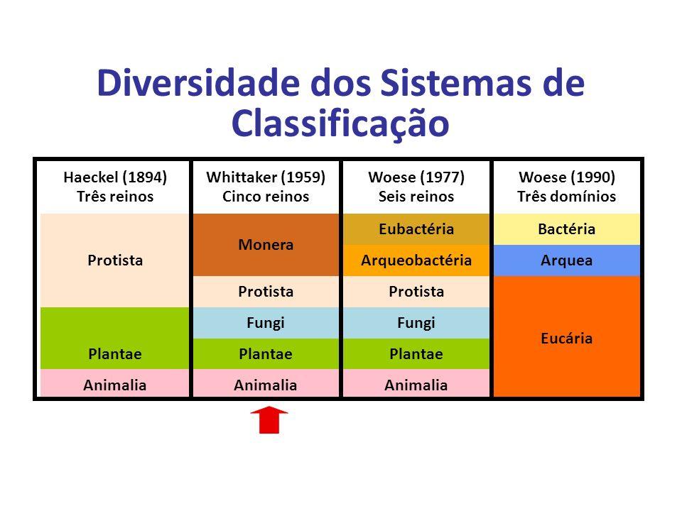 Elaboração Prof. Santer Matos Diversidade dos Sistemas de Classificação Haeckel (1894) Três reinos Whittaker (1959) Cinco reinos Woese (1977) Seis rei