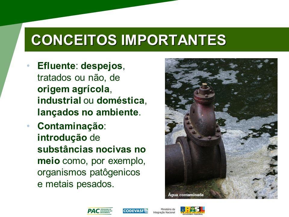 CONCEITOS IMPORTANTES Efluente: despejos, tratados ou não, de origem agrícola, industrial ou doméstica, lançados no ambiente. Contaminação: introdução