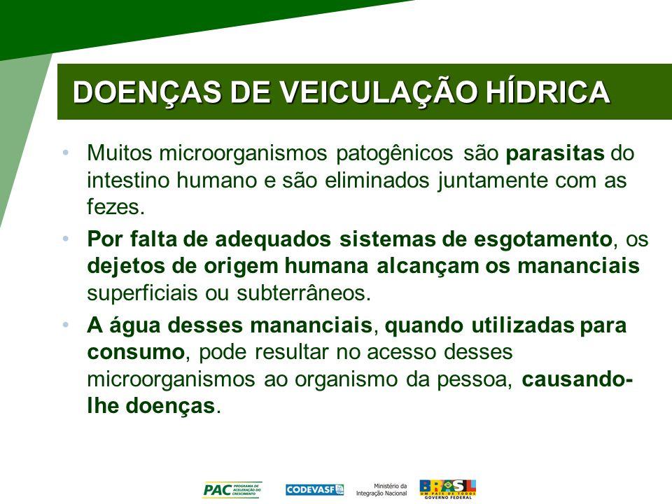 DOENÇAS DE VEICULAÇÃO HÍDRICA Muitos microorganismos patogênicos são parasitas do intestino humano e são eliminados juntamente com as fezes. Por falta