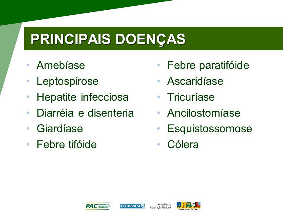 PRINCIPAIS DOENÇAS Amebíase Leptospirose Hepatite infecciosa Diarréia e disenteria Giardíase Febre tifóide Febre paratifóide Ascaridíase Tricuríase Ancilostomíase Esquistossomose Cólera