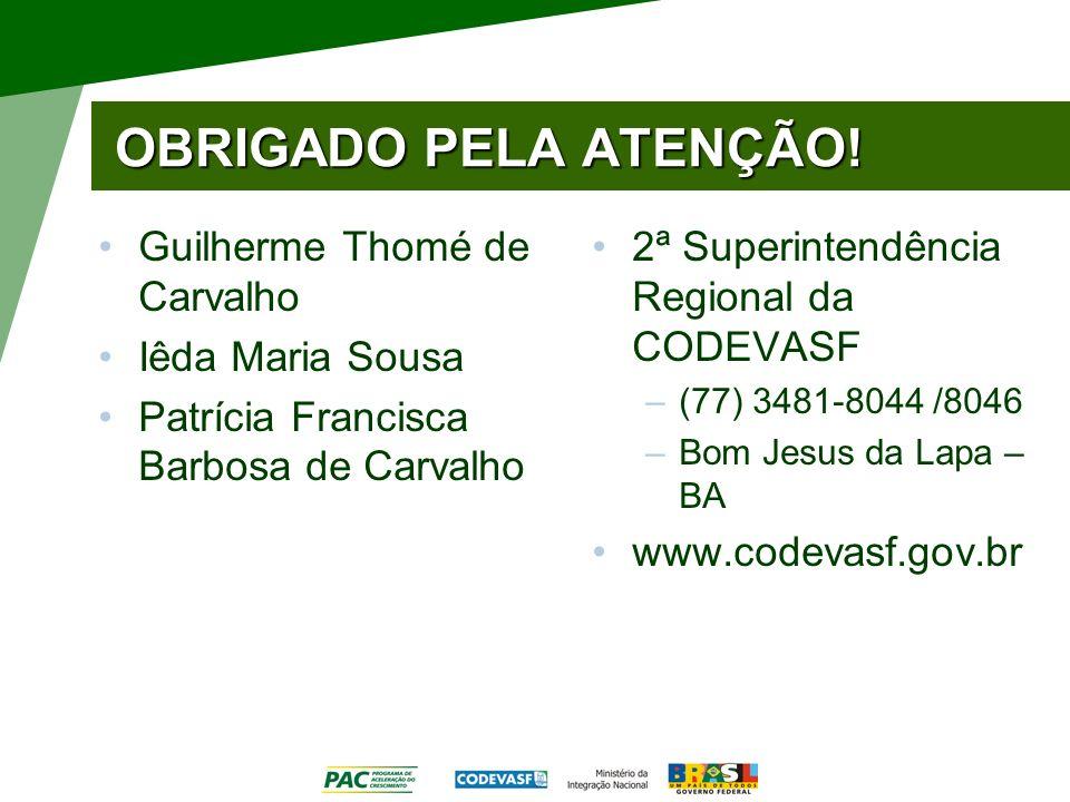 OBRIGADO PELA ATENÇÃO! Guilherme Thomé de Carvalho Iêda Maria Sousa Patrícia Francisca Barbosa de Carvalho 2ª Superintendência Regional da CODEVASF –(