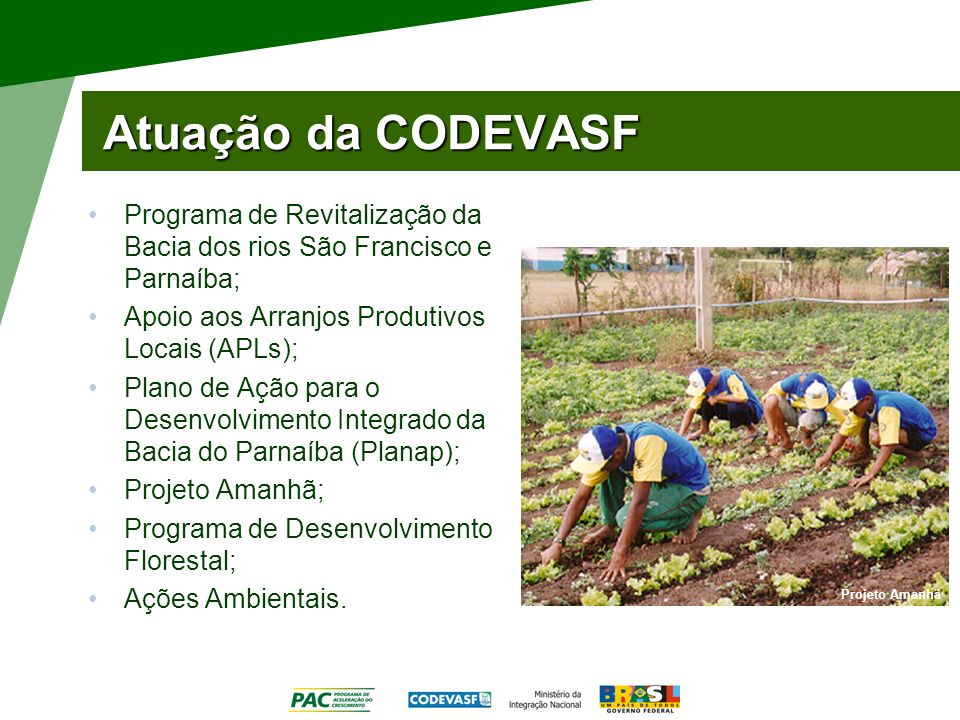 Atuação da CODEVASF Programa de Revitalização da Bacia dos rios São Francisco e Parnaíba; Apoio aos Arranjos Produtivos Locais (APLs); Plano de Ação p
