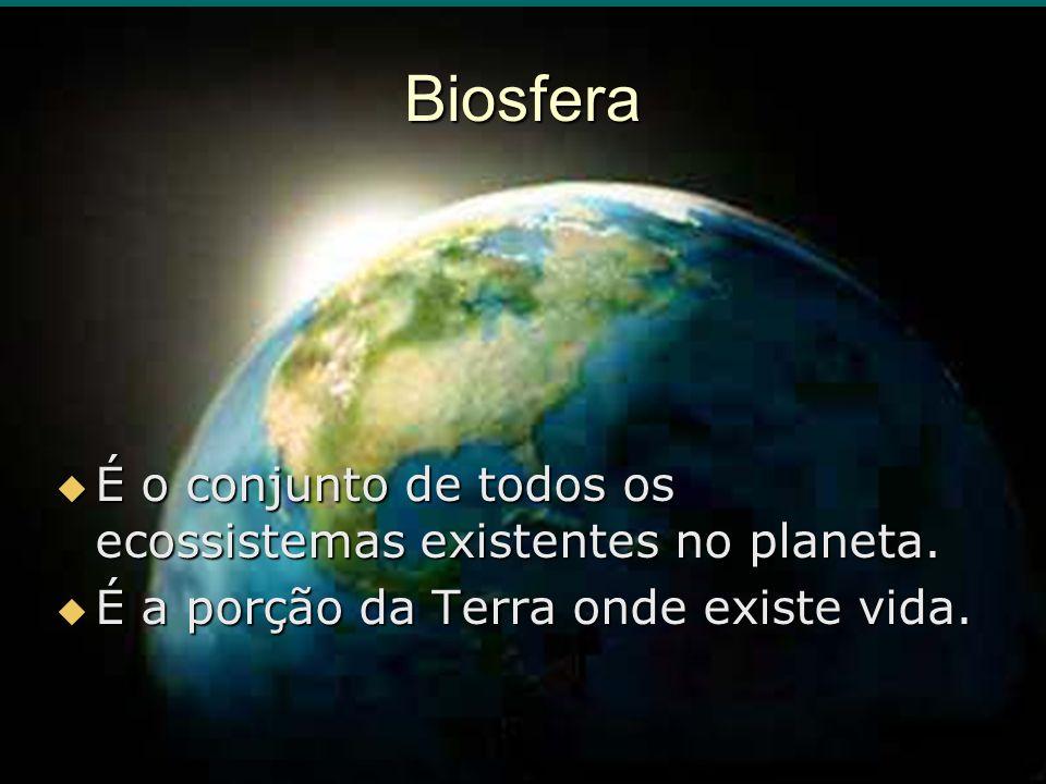 Biosfera É o conjunto de todos os ecossistemas existentes no planeta. É o conjunto de todos os ecossistemas existentes no planeta. É a porção da Terra