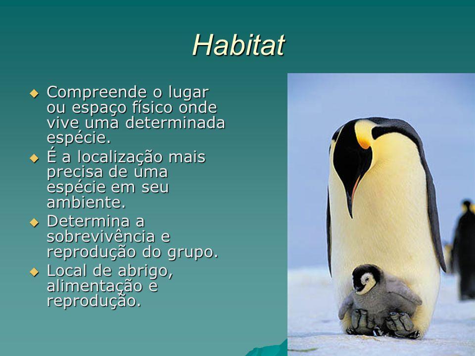 Habitat Compreende o lugar ou espaço físico onde vive uma determinada espécie.