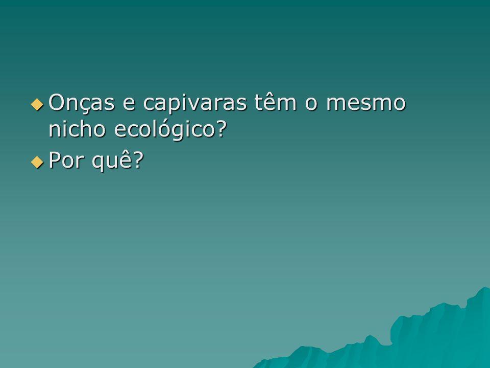 Onças e capivaras têm o mesmo nicho ecológico.Onças e capivaras têm o mesmo nicho ecológico.