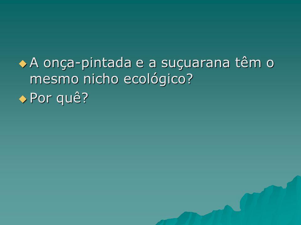 A onça-pintada e a suçuarana têm o mesmo nicho ecológico? A onça-pintada e a suçuarana têm o mesmo nicho ecológico? Por quê? Por quê?