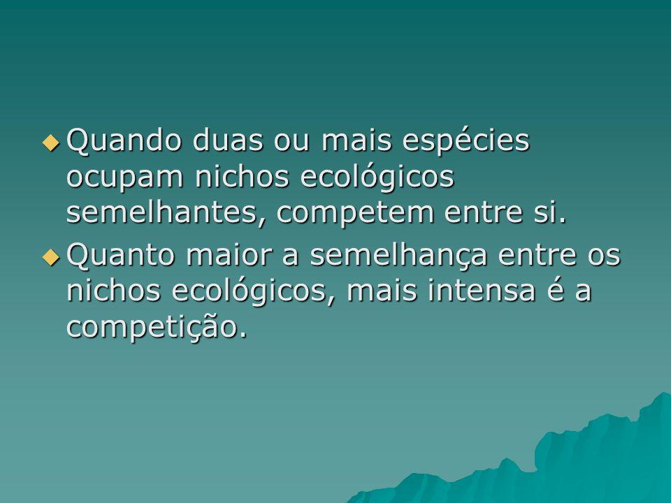 Quando duas ou mais espécies ocupam nichos ecológicos semelhantes, competem entre si. Quando duas ou mais espécies ocupam nichos ecológicos semelhante