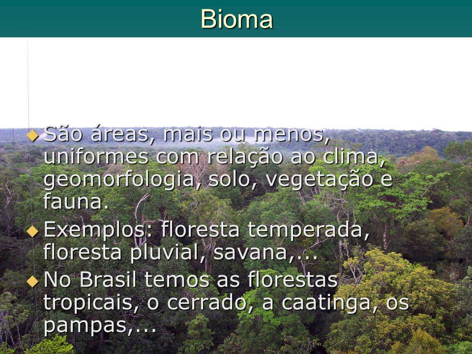 Bioma São áreas, mais ou menos, uniformes com relação ao clima, geomorfologia, solo, vegetação e fauna. São áreas, mais ou menos, uniformes com relaçã